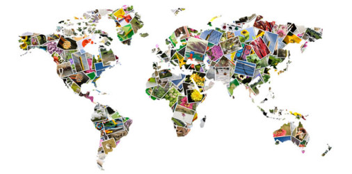 Studiare all' estero